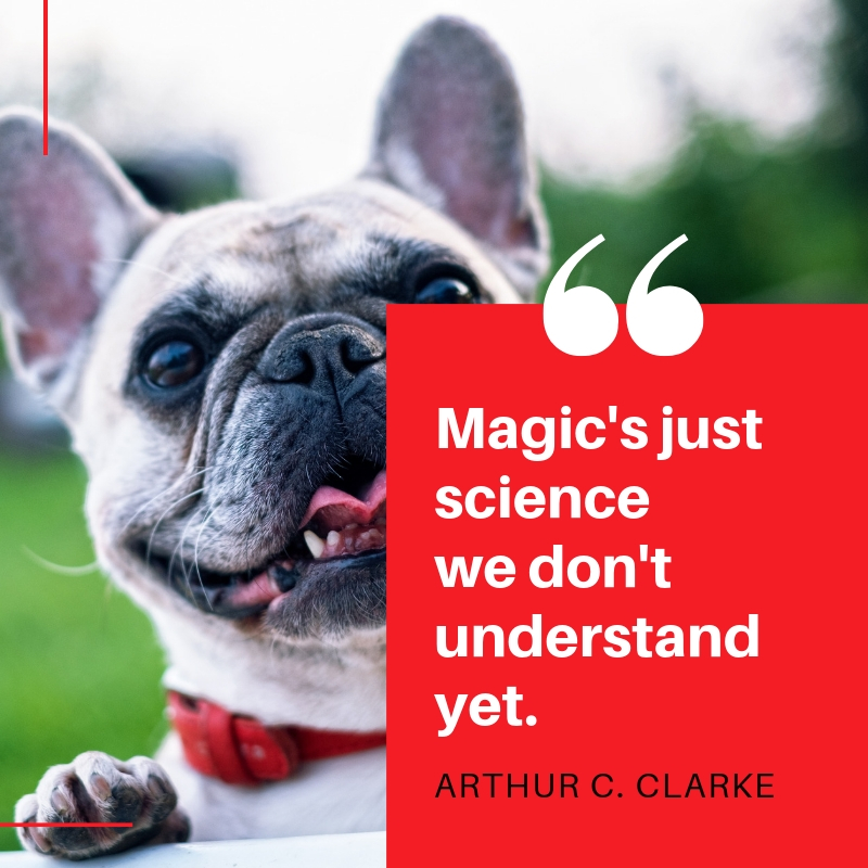 magic-just-science-we-dont-understand-yet-arthur-c-clarke